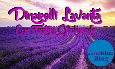 Dinarelli Lavanta Dinar Kaymakamligi