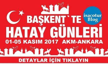 Baskette Hatay Gunleri 2017
