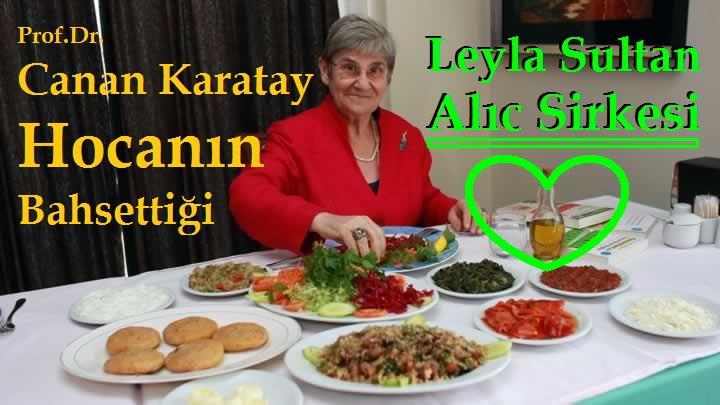 Prof.Dr.Canan Karatay Hocanın Bahsettiği Çankırı'lı Leyla Hanım