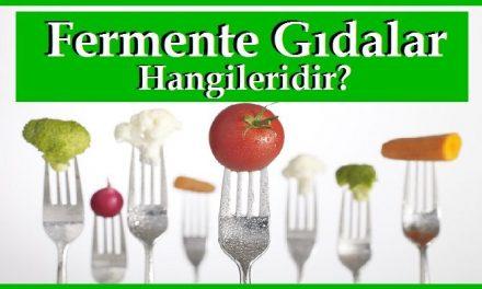 Fermente Gıdalar Hangileridir