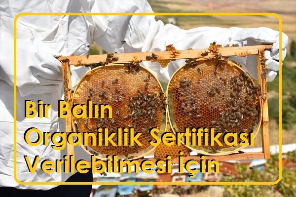 Bir Balın Organiklik Sertifikası Verilebilmesi İçin