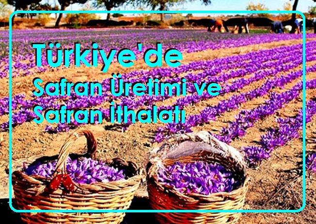 Türkiye'de Safran Üretimi ve Safran İthalatı