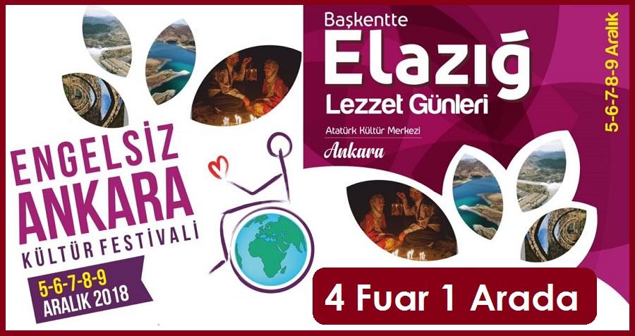 Engelsiz Ankara - Elazığ Yöresel Lezzetleri Fuarı