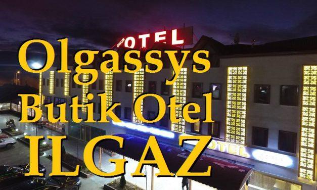 Olgassys Butik Otel Ilgaz