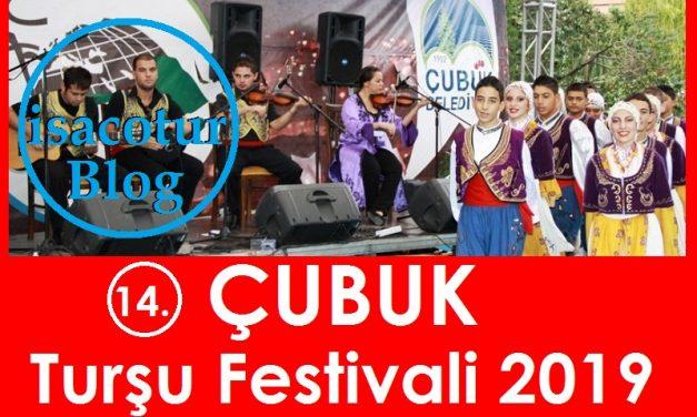 Çubuk Turşu Festivali 2019