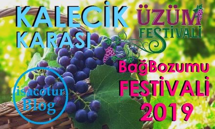 Kalecik Karası Festivali 2019