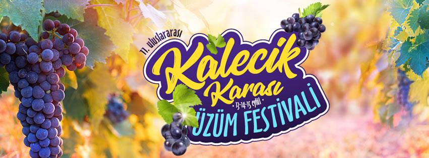 Kalecik Karası Üzüm Festivali 2019