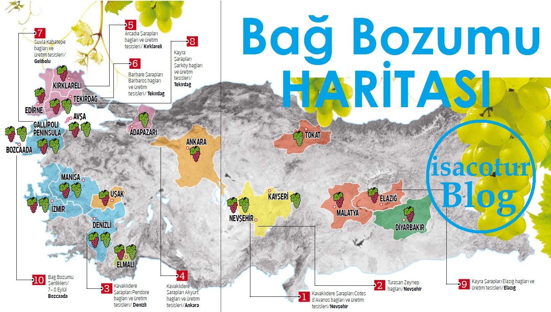 Kalecik Karası Üzüm Festivali 2019 bağbozumu haritası