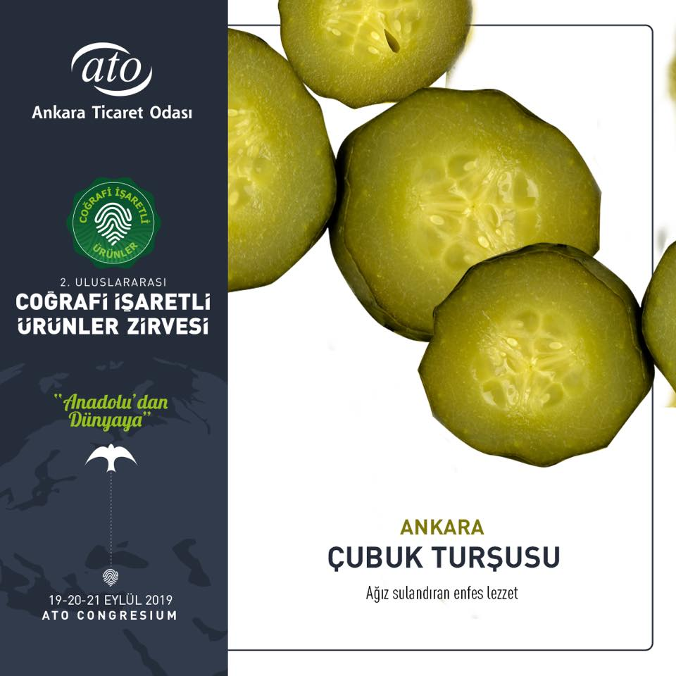 Ankara'nın Coğrafi İşaretli Ürünleri ÇUBUK TURŞUSU