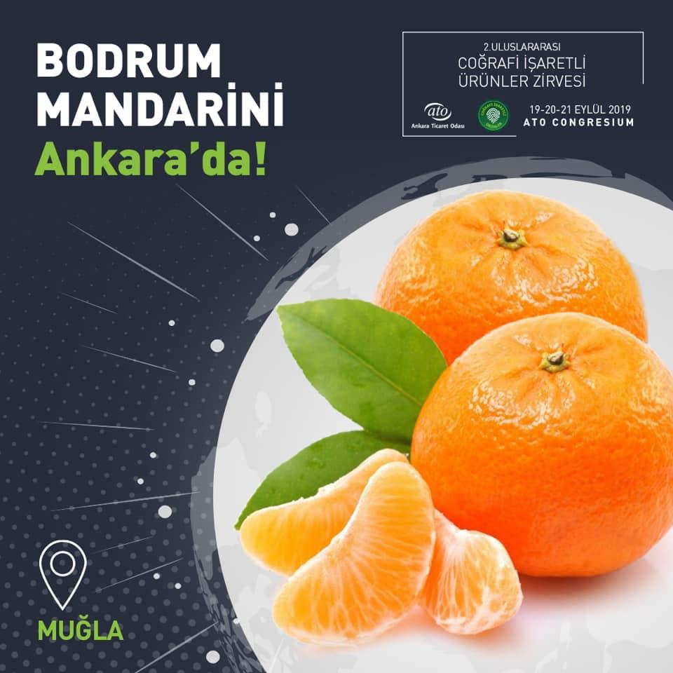 Muğla Bodrum Mandarini, 2. Uluslararası Coğrafi İşaretli Ürünler Zirvesi'nde