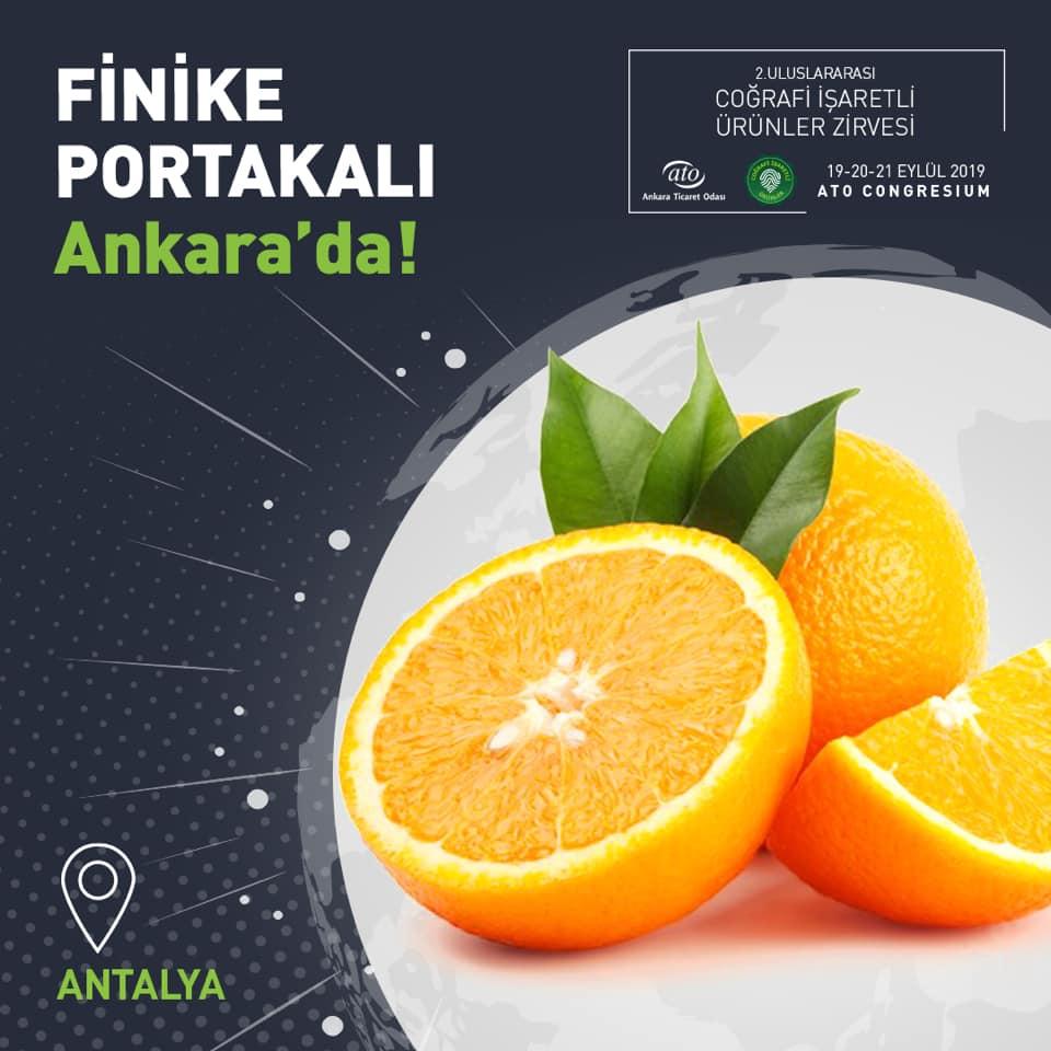 Antalya Finike Portakalı, 2. Uluslararası Coğrafi İşaretli Ürünler Zirvesi'nde