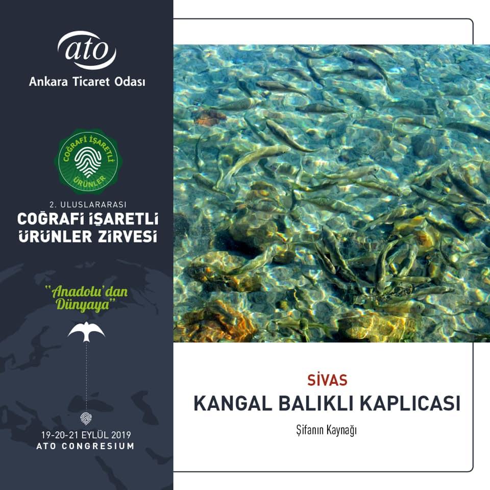 Sivas'ın dünyaca ünlü Balıklı Kaplıcası, 2. Uluslararası Coğrafi İşaretli Ürünler Zirvesi'nde