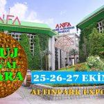 Zeruj Festival Ankara 2019