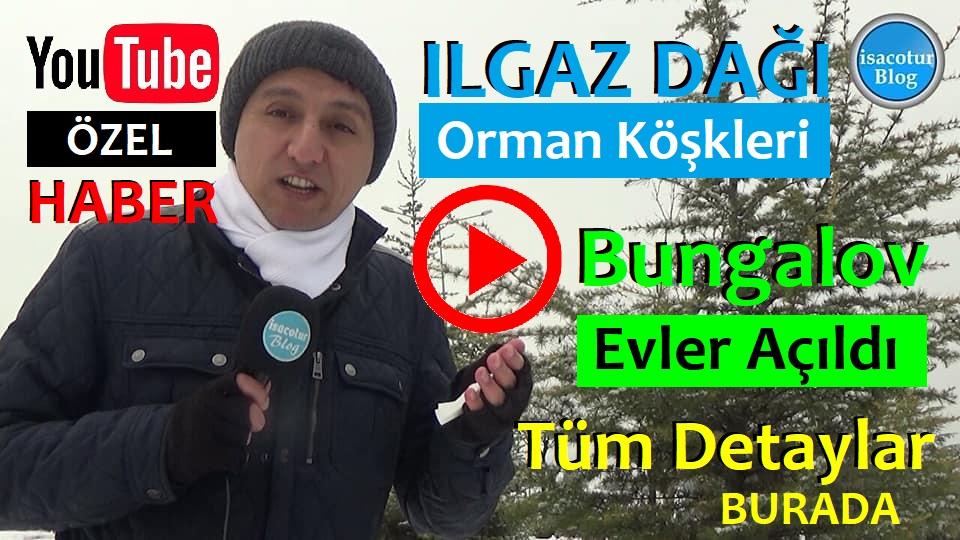 Ilgaz Dağı Bungalov Evleri 2020 Yılında Hizmete Girdi