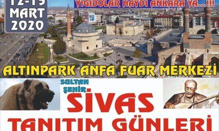 Ankara Sivas Günleri 2020