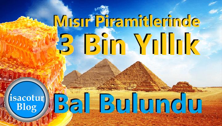 Mısır Piramitlerinde 3 Bin Yıllık Bal Bulundu