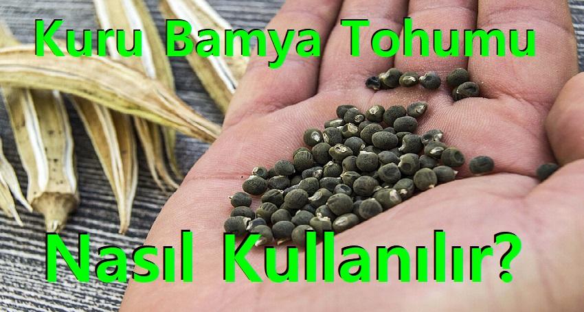 Kuru Bamya Tohumu Nasıl Kullanılır?