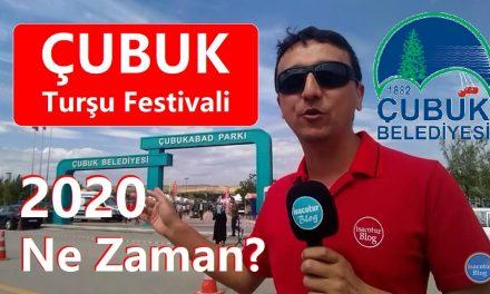 Çubuk Turşu Festivali 2020
